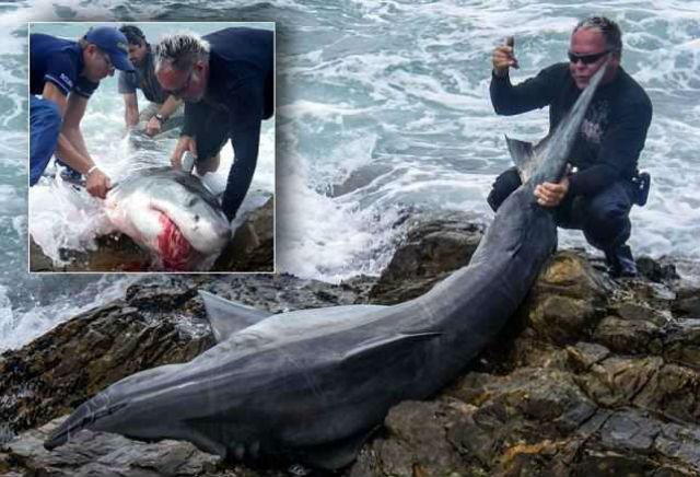 рыбаки убийцы